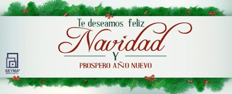 Feliz Navidad les deseamos todos los que hacemos Grupo Seyma